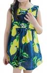 GAGA Girls Sleeveless Round Neck Print Flowers A-line Mini Dress