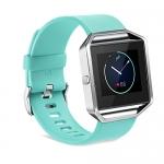 Fitbit Blaze Smartwatch Bands