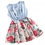 Little Girls Sleeveless Floral Dress
